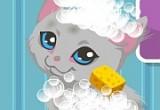 لعبة رعاية القطة كيتى الصغيرة