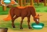 العاب إلسا رعاية الخيول