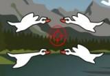 لعبة قنص و صيد الحمام